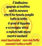FB_IMG_1593670078331.jpg