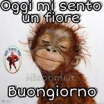 FB_IMG_1599107925926.jpg