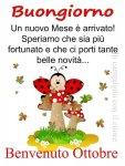 FB_IMG_1601528659033.jpg
