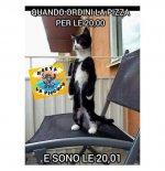 FB_IMG_1601370713478.jpg