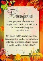 FB_IMG_1606370151871.jpg