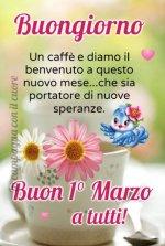 FB_IMG_1614578805078.jpg