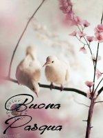 Buona-Pasqua-immagini-59.jpg