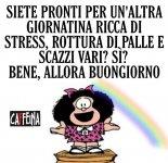 FB_IMG_1618935221561.jpg