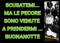 FB_IMG_1623232790321.jpg