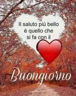 FB_IMG_1624183071605.jpg