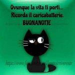 FB_IMG_1624109907776.jpg