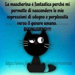 FB_IMG_1627033957804.jpg