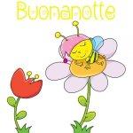 Buonanotte-33-e1532260711854.jpg
