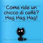 FB_IMG_1631794878256.jpg