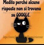 FB_IMG_1631794464193.jpg