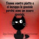 FB_IMG_1631775993693.jpg