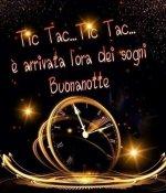 FB_IMG_1630745422368.jpg