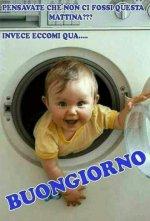 FB_IMG_1631811026050.jpg