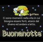 FB_IMG_1630507120575.jpg