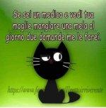 FB_IMG_1632643836784.jpg